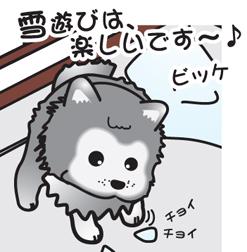 2010 2月 ビッケ雪遊び.jpg