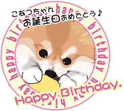 2014 5月 こなつ お誕生日.jpg
